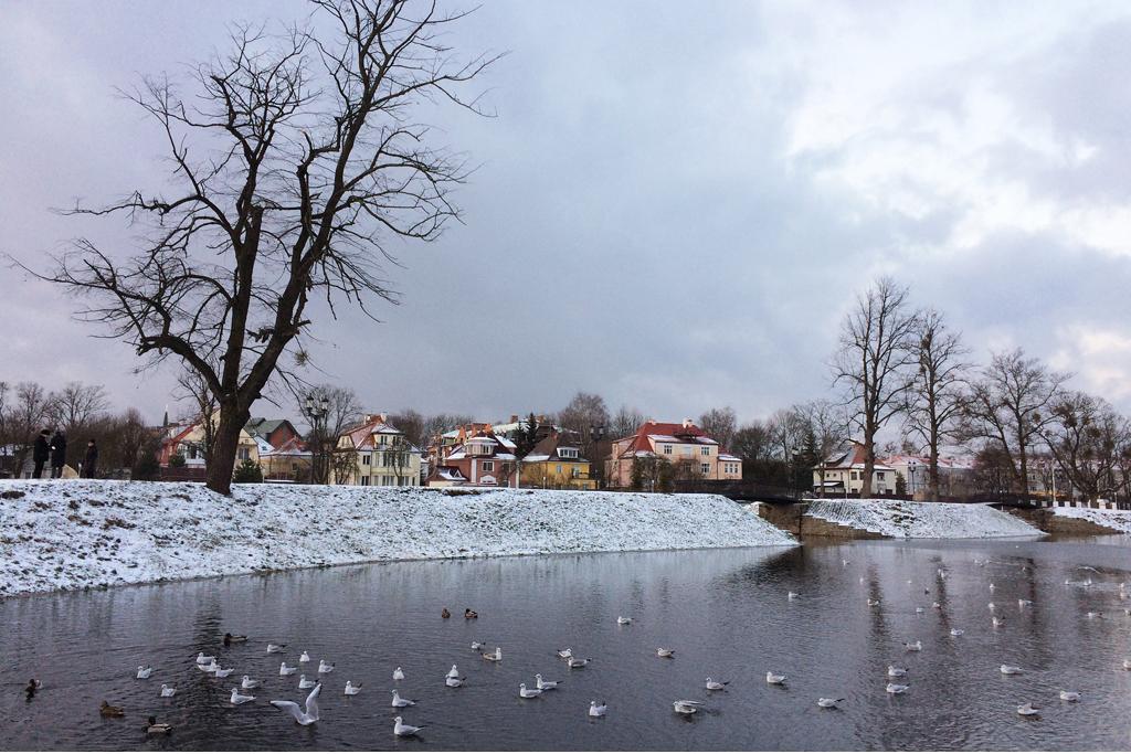 Прогулки по зимнему Калининграду