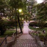 Парк Луизенваль