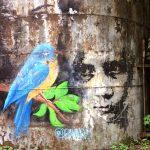 Граффити на набережной Нижнего пруда