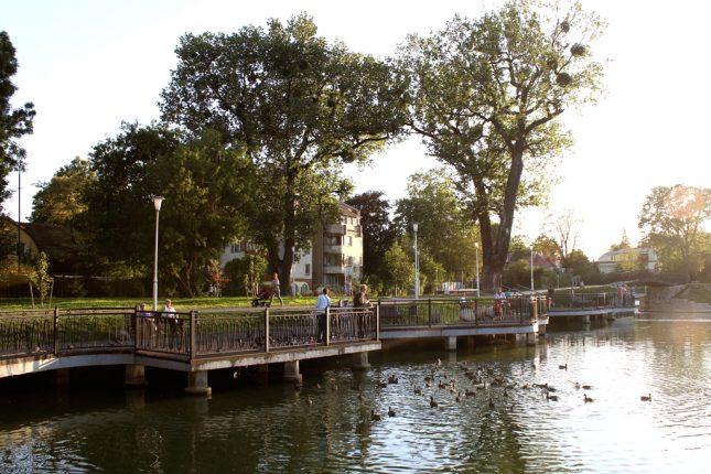 Хлебое озеро в Калининграде
