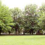 Парк на острове Канта