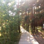 Экологические тропы Куршской косы
