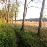 Природные парки Калининградской области