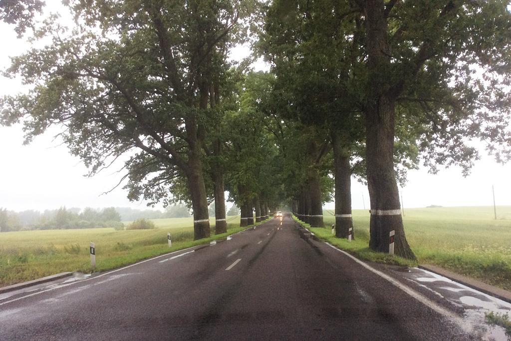 Дорога в Калининград
